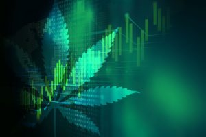 Top Cannabis Stocks to Look Out For in 2021