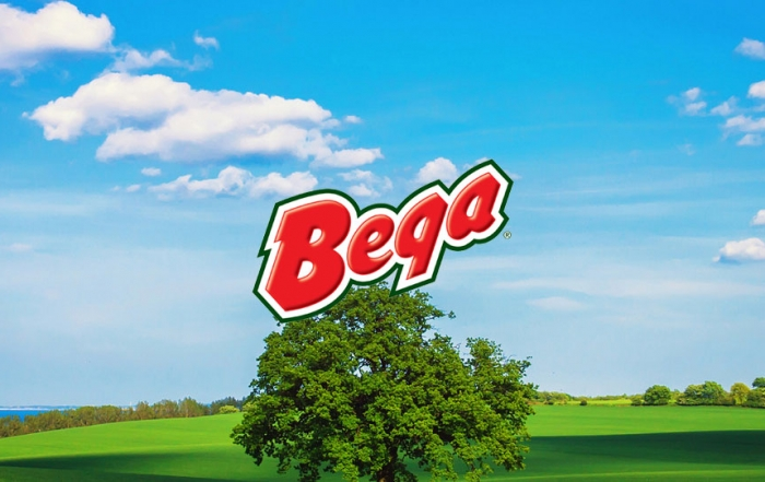 Bega Cheese Ltd Shares falls further down on ASX. Is it the right time to buy?